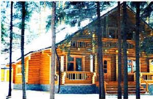 Дом DD02-103 (187 кв.м)