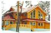 Дом DD02-665 (315 кв.м)