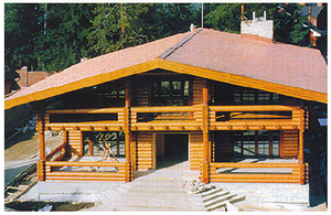 Дом DD02-171 (520 кв.м)
